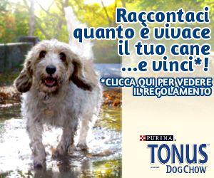 Tonus Disc Dog Tour 2014 fa tappa a Napoli