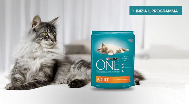 Nutri il tuo gatto con Purina ONE per 3 settimane e guarda i risultati sul suo benessere!